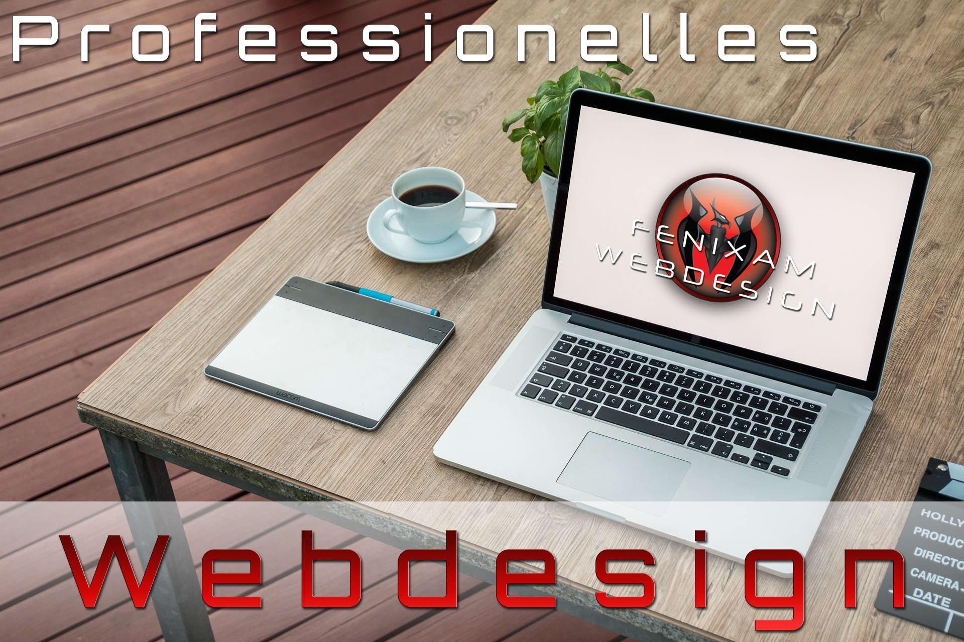 Professionelles Webdesign Frankfurt Offenbach Hanau Dietzenbach